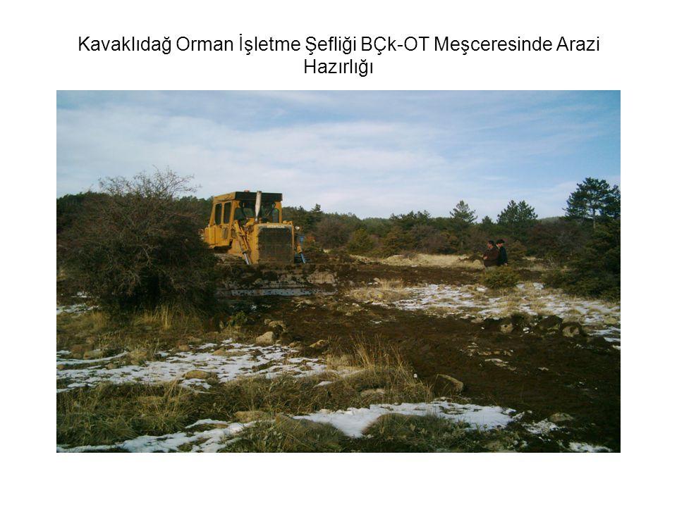 Kavaklıdağ Orman İşletme Şefliği BÇk-OT Meşceresinde Arazi Hazırlığı