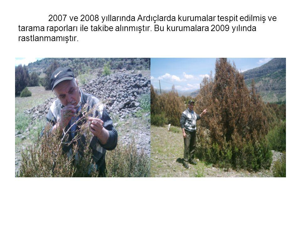 2007 ve 2008 yıllarında Ardıçlarda kurumalar tespit edilmiş ve tarama raporları ile takibe alınmıştır. Bu kurumalara 2009 yılında rastlanmamıştır.