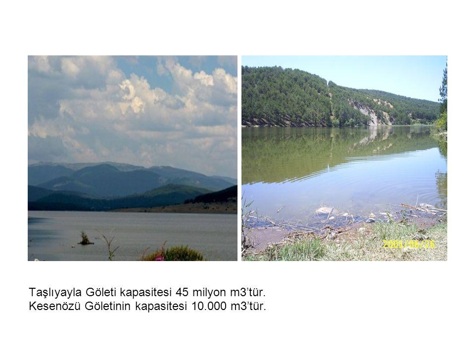 Taşlıyayla Göleti kapasitesi 45 milyon m3'tür. Kesenözü Göletinin kapasitesi 10.000 m3'tür.