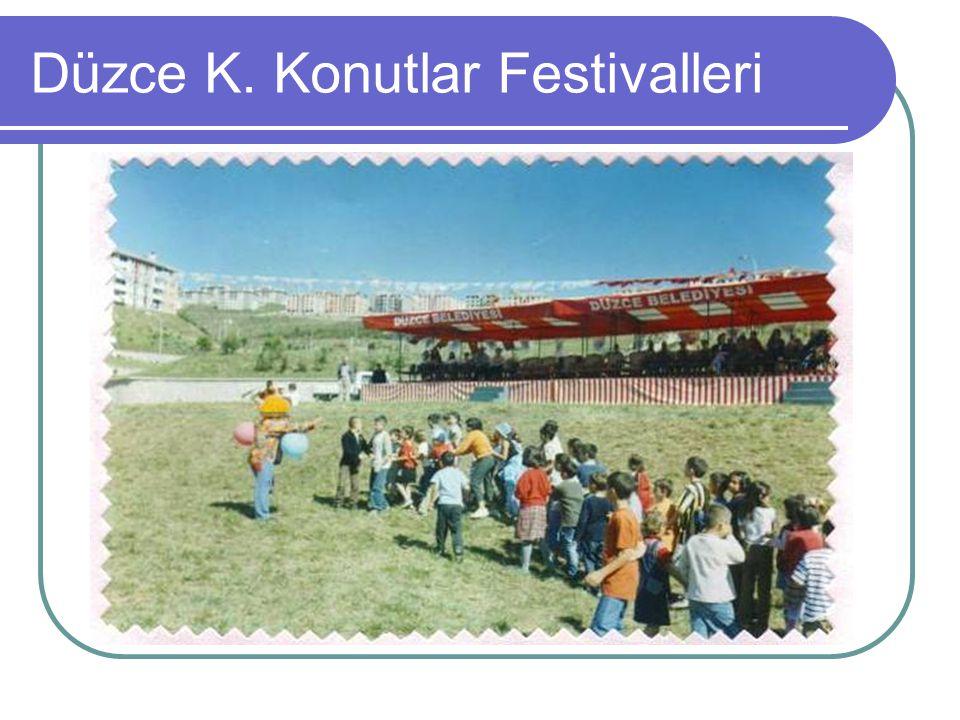 Düzce K. Konutlar Festivalleri