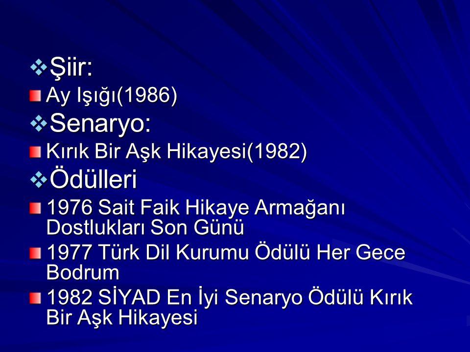  Şiir: Ay Işığı(1986)  Senaryo: Kırık Bir Aşk Hikayesi(1982)  Ödülleri 1976 Sait Faik Hikaye Armağanı Dostlukları Son Günü 1977 Türk Dil Kurumu Ödü