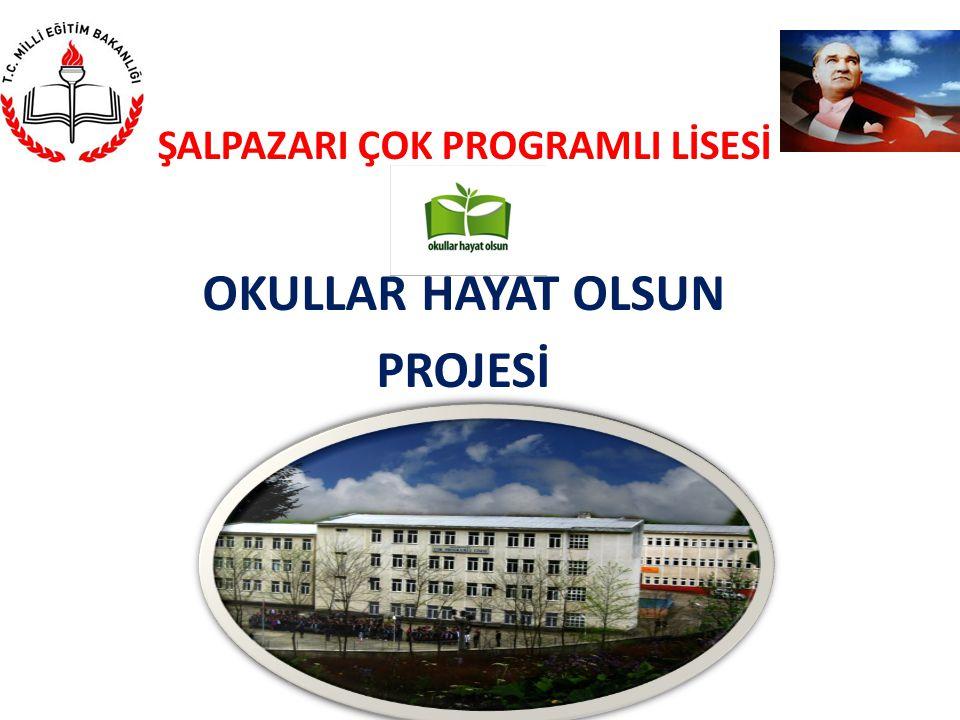 PROJENİN ADI: OKULLAR HAYAT OLSUN Projenin uygulandığı il/ilçe: Trabzon/Şalpazarı Proje sorumlusu kurum: Şalpazarı ÇPL İşbirliği yapılan kurum ve kuruluşlar: Kaymakamlık, İlçe Milli Eğitim, Belediye Proje Sorumluları, Görevleri ve İletişim Adresleri: Kemal TÜRKMEN Okul Müdürü Telefon: (0462) 8912114 Fax: (0462) 8913012