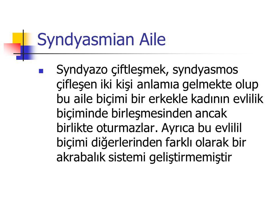 Syndyasmian Aile Syndyazo çiftleşmek, syndyasmos çifleşen iki kişi anlamıa gelmekte olup bu aile biçimi bir erkekle kadının evlilik biçiminde birleşme