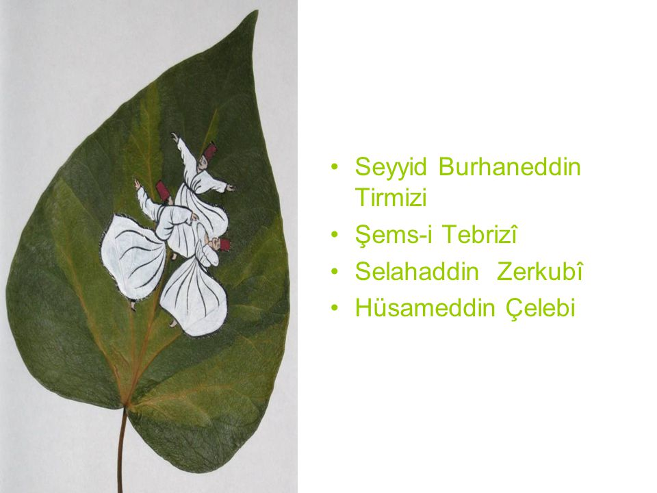 Seyyid Burhaneddin Tirmizi Şems-i Tebrizî Selahaddin Zerkubî Hüsameddin Çelebi