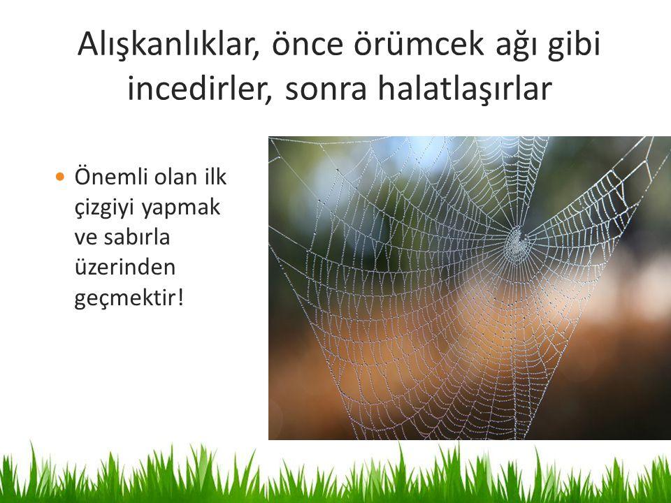 Alışkanlıklar, önce örümcek ağı gibi incedirler, sonra halatlaşırlar Önemli olan ilk çizgiyi yapmak ve sabırla üzerinden geçmektir!