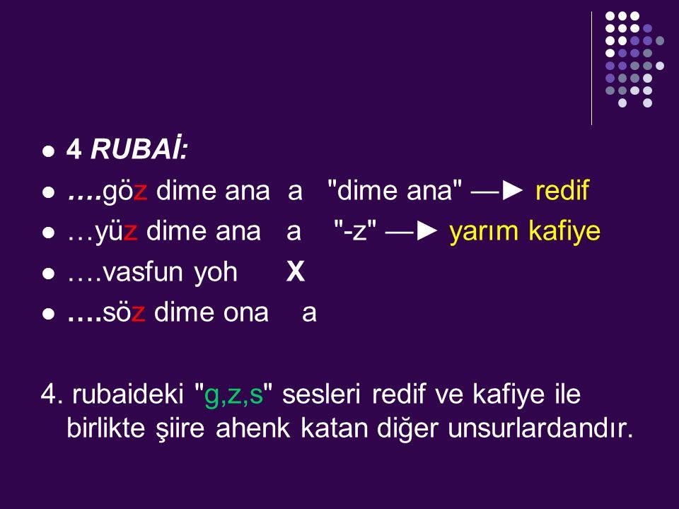 Şiir Dili Arapça ve Farsça sözcük ve tamlamalar kullanılmış, şiir dili daha çok edebî sanatlarla sağlanmıştır.