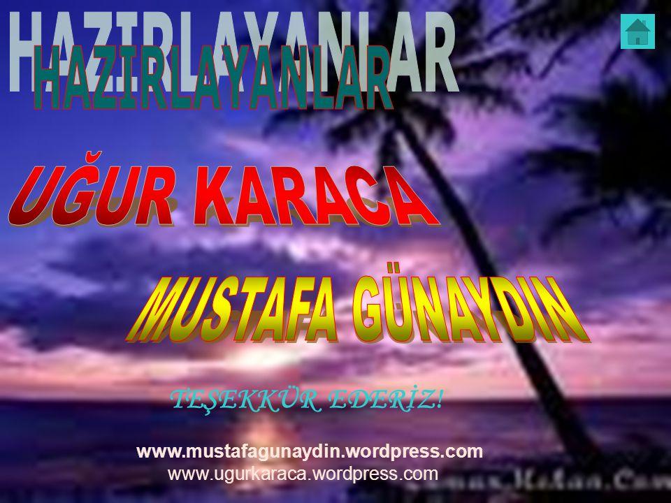 www.mustafagunaydin.wordpress.com www.ugurkaraca.wordpress.com TEŞEKKÜR EDERİZ!