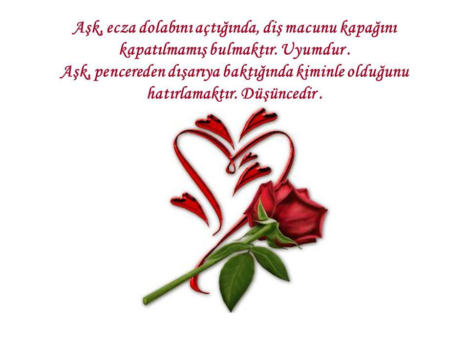 Aşk, rüzgarın ağaçların arasında dolaşırken çıkardığı sesi dinleyip sevgilisinin yanında olmadığına hayıflanmaktır.