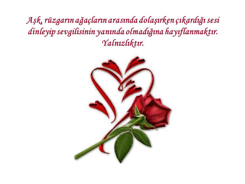 Aşk, rüzgarın ağaçların arasında dolaşırken çıkardığı sesi dinleyip sevgilisinin yanında olmadığına hayıflanmaktır. Yalnızlıktır.