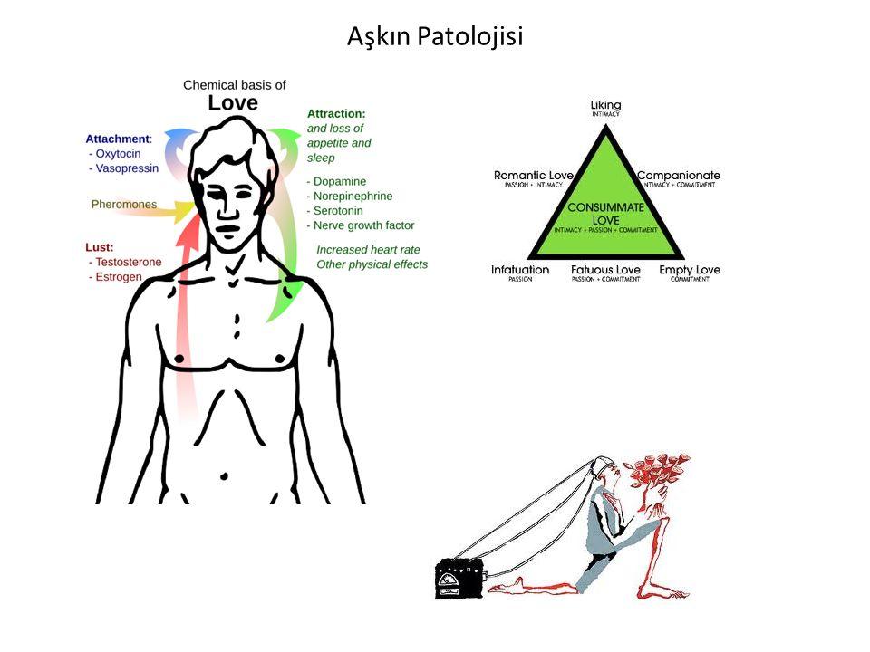 Aşkın Patolojisi
