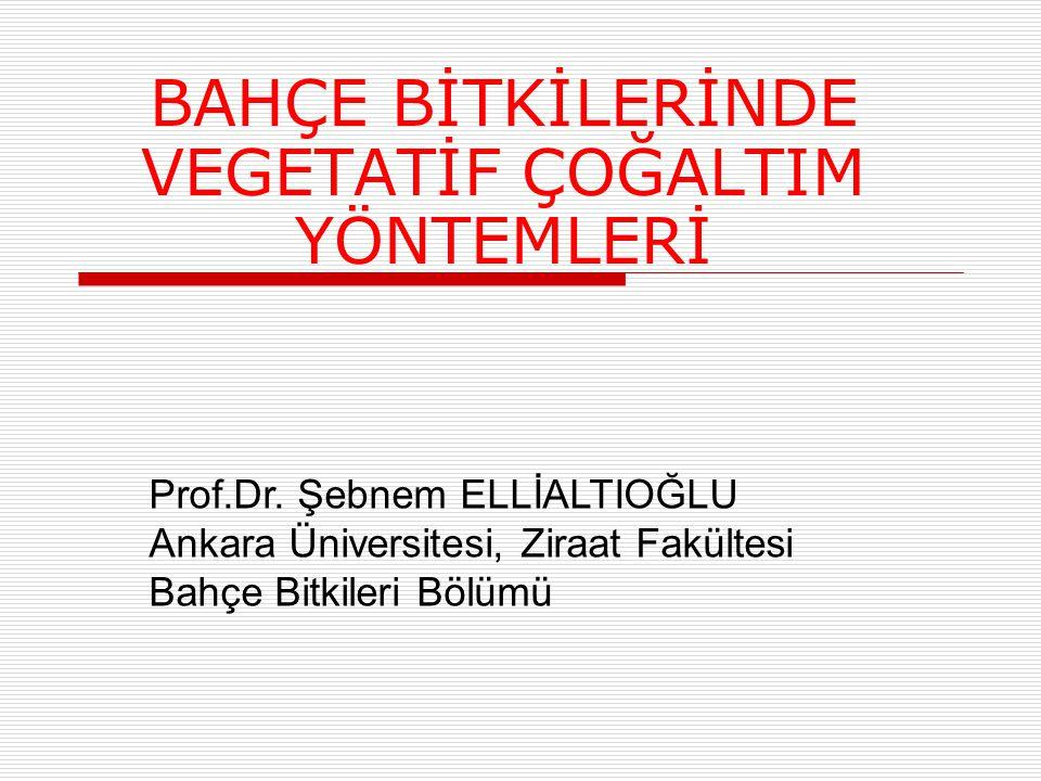 BAHÇE BİTKİLERİNDE VEGETATİF ÇOĞALTIM YÖNTEMLERİ Prof.Dr. Şebnem ELLİALTIOĞLU Ankara Üniversitesi, Ziraat Fakültesi Bahçe Bitkileri Bölümü