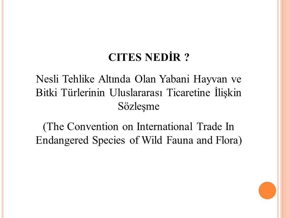 CITES NEDİR ? Nesli Tehlike Altında Olan Yabani Hayvan ve Bitki Türlerinin Uluslararası Ticaretine İlişkin Sözleşme (The Convention on International T