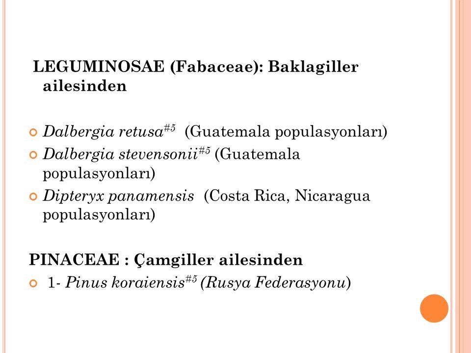 LEGUMINOSAE (Fabaceae): Baklagiller ailesinden Dalbergia retusa #5 (Guatemala populasyonları) Dalbergia stevensonii #5 (Guatemala populasyonları) Dipt