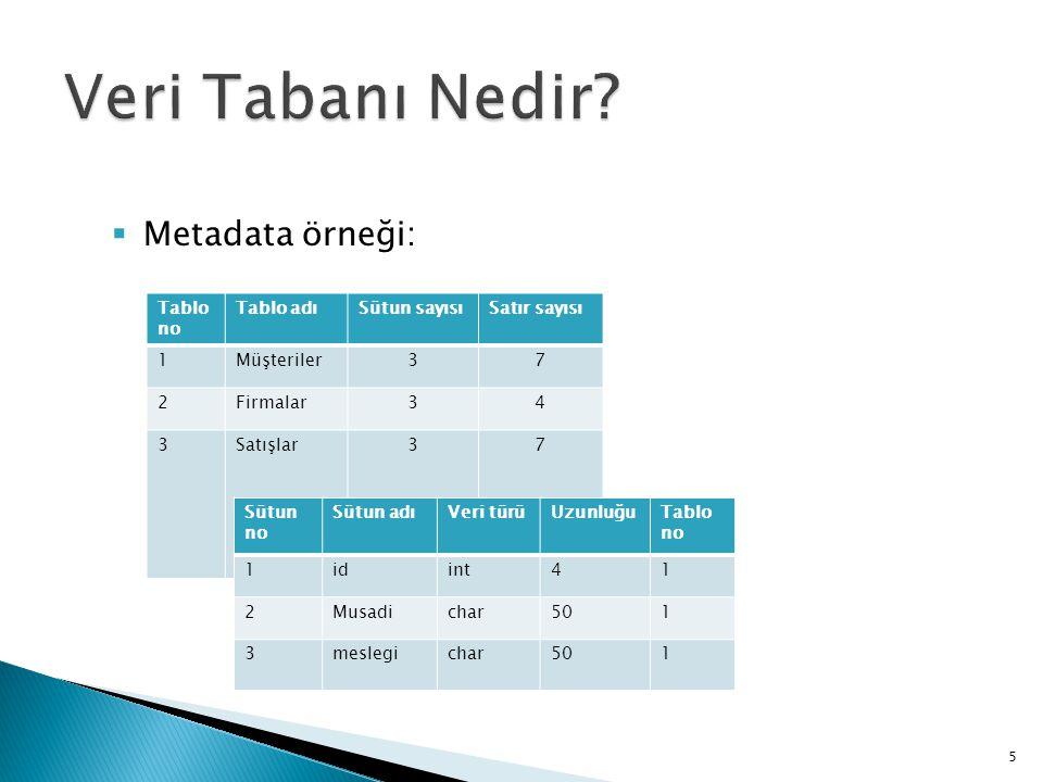 Metadata örneği: 5 Tablo no Tablo adıSütun sayısıSatır sayısı 1Müşteriler37 2Firmalar34 3Satışlar37 Sütun no Sütun adıVeri türüUzunluğuTablo no 1idi
