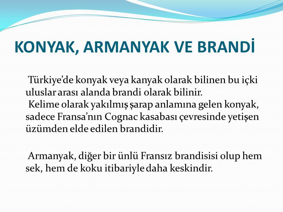KONYAK, ARMANYAK VE BRANDİ Türkiye'de konyak veya kanyak olarak bilinen bu içki uluslar arası alanda brandi olarak bilinir. Kelime olarak yakılmış şar