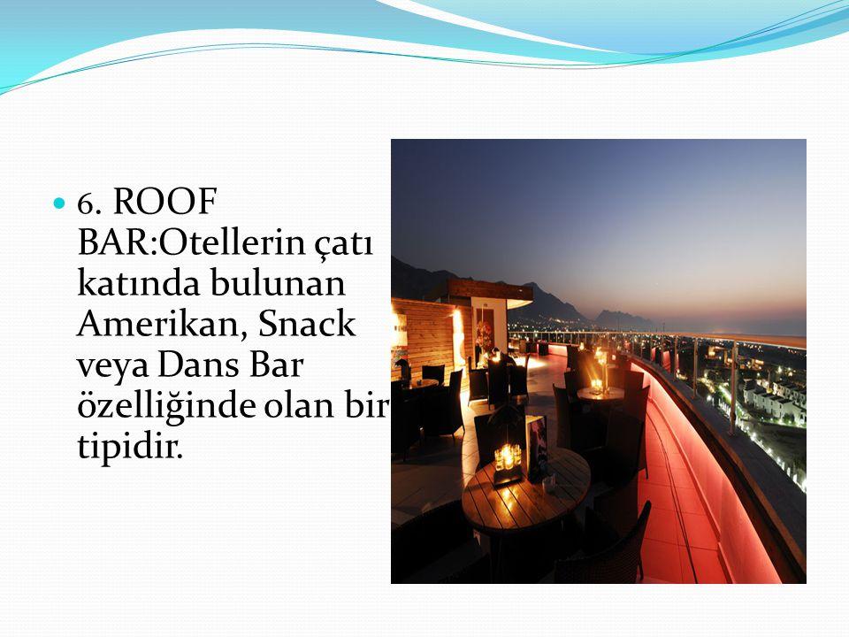 6. ROOF BAR:Otellerin çatı katında bulunan Amerikan, Snack veya Dans Bar özelliğinde olan bir tipidir.