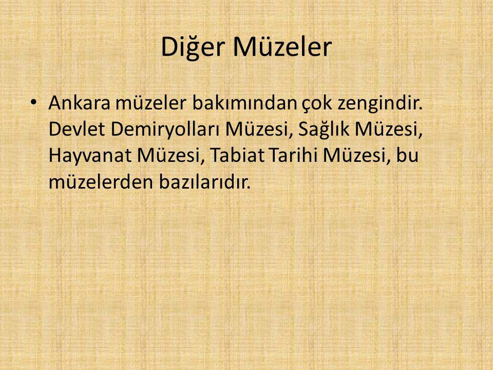 Diğer Müzeler Ankara müzeler bakımından çok zengindir. Devlet Demiryolları Müzesi, Sağlık Müzesi, Hayvanat Müzesi, Tabiat Tarihi Müzesi, bu müzelerden