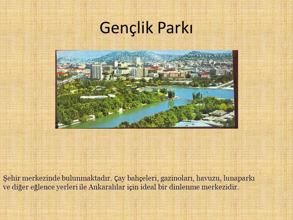 Gençlik Parkı Şehir merkezinde bulunmaktadır. Ç ay bah ç eleri, gazinoları, havuzu, lunaparkı ve diğer eğlence yerleri ile Ankaralılar i ç in ideal bi