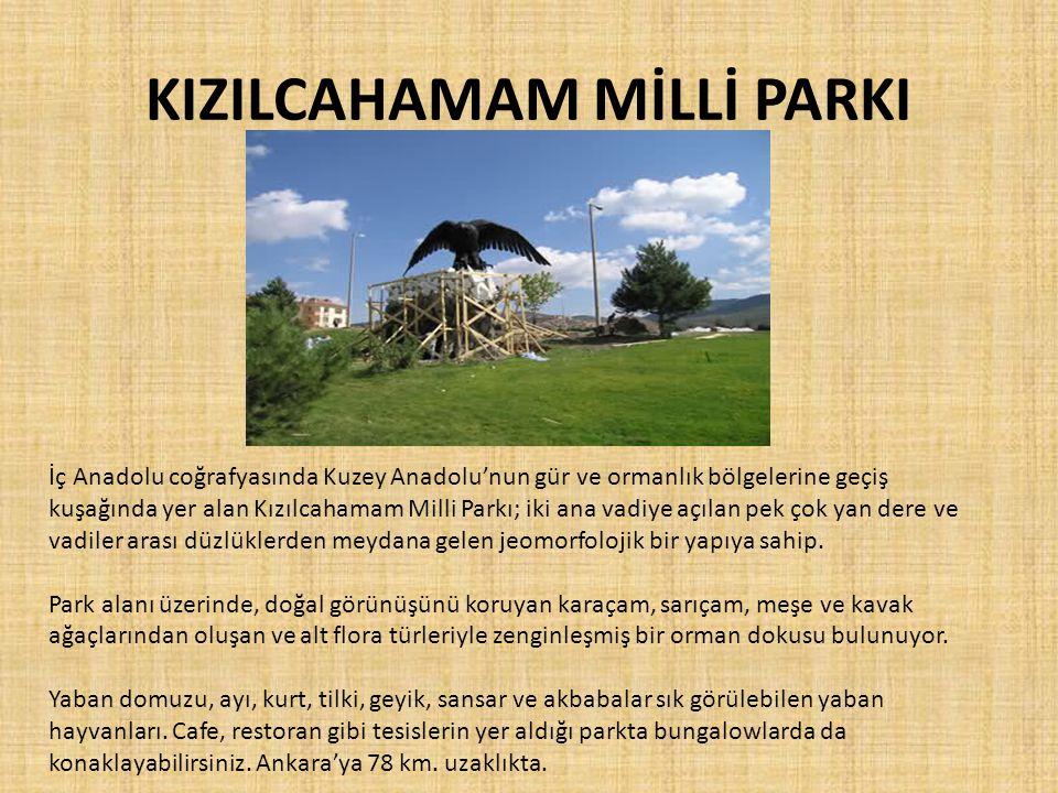KIZILCAHAMAM MİLLİ PARKI İç Anadolu coğrafyasında Kuzey Anadolu'nun gür ve ormanlık bölgelerine geçiş kuşağında yer alan Kızılcahamam Milli Parkı; iki ana vadiye açılan pek çok yan dere ve vadiler arası düzlüklerden meydana gelen jeomorfolojik bir yapıya sahip.