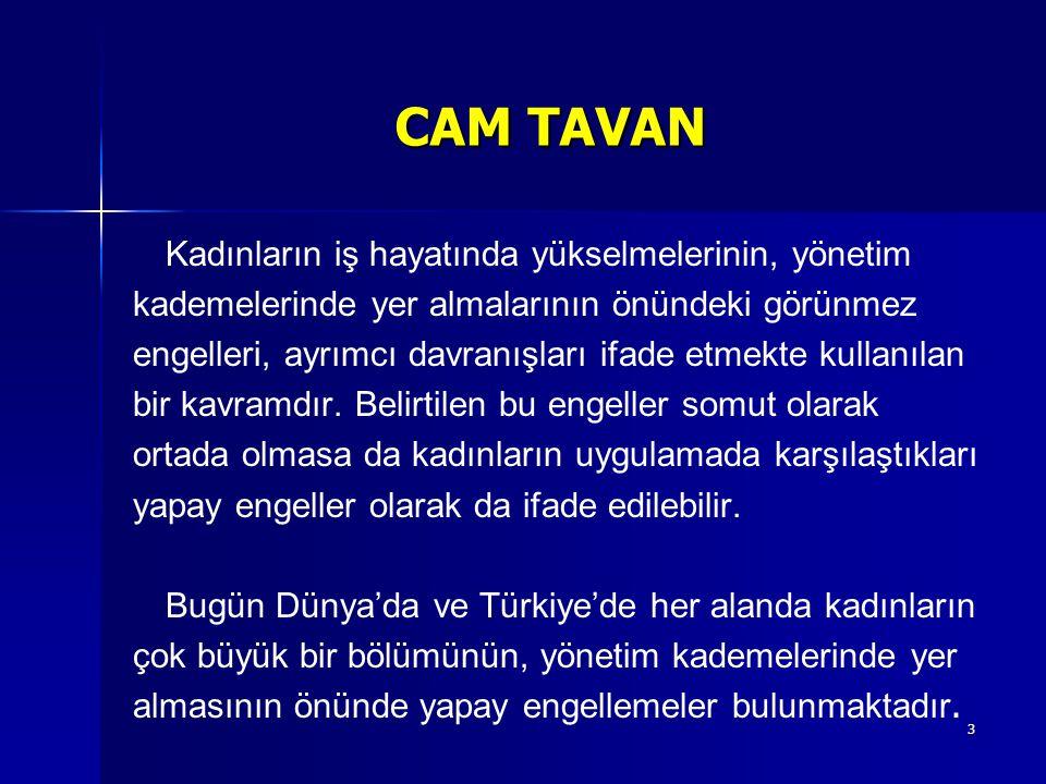 14 CAM TAVAN 4.