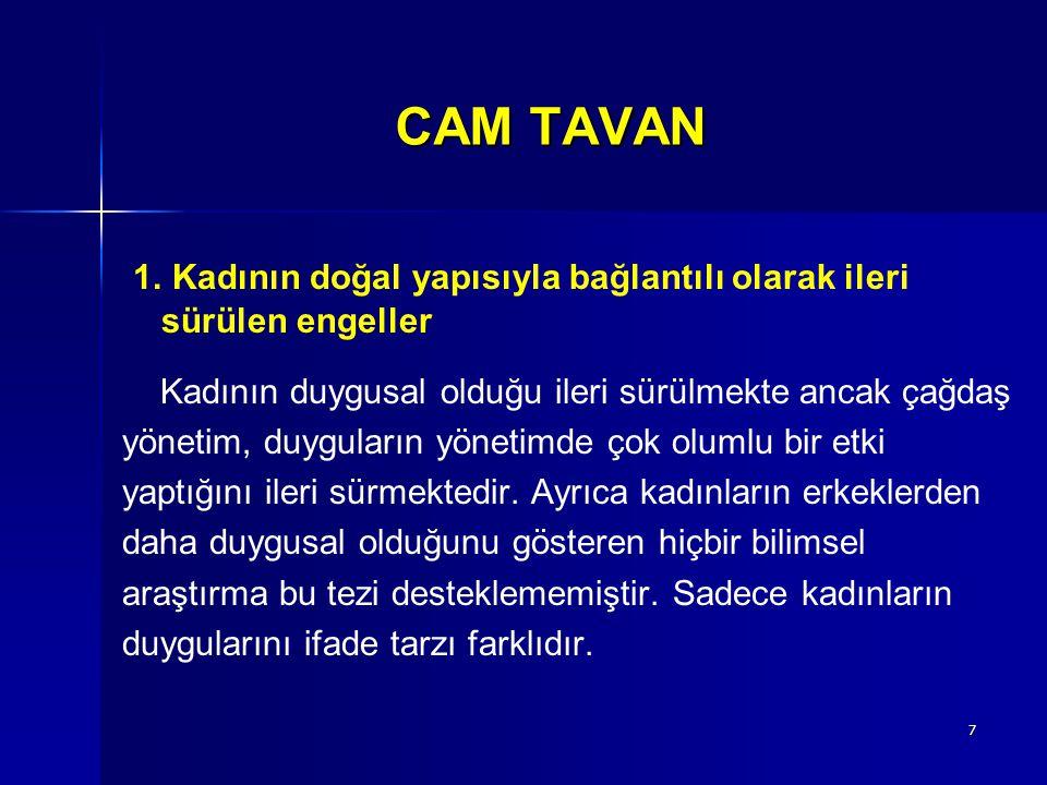 8 CAM TAVAN 2.