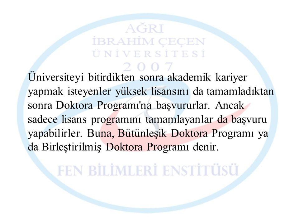 Üniversiteyi bitirdikten sonra akademik kariyer yapmak isteyenler yüksek lisansını da tamamladıktan sonra Doktora Programı'na başvururlar. Ancak sadec