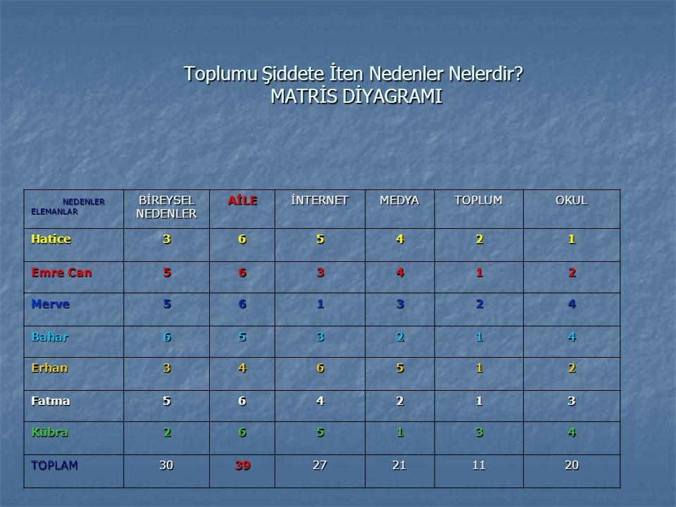 PLANLADIKLARIMIZ M Matris diyagramını bir kez daha kullanarak çalışacağımız ana nedeni belirledik.