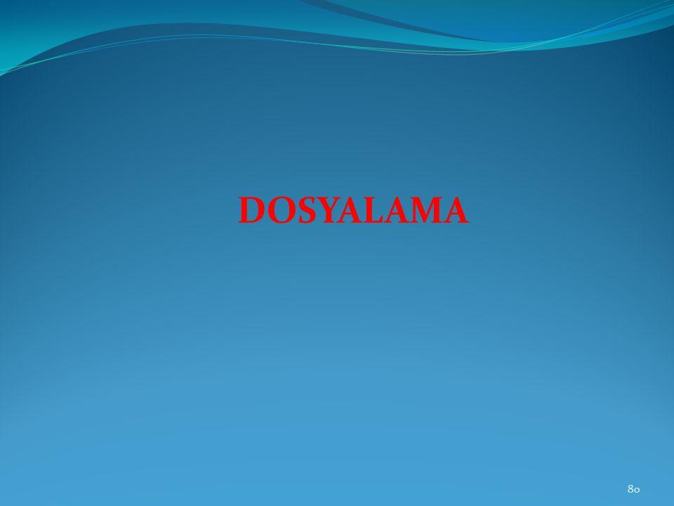 DOSYALAMA 80