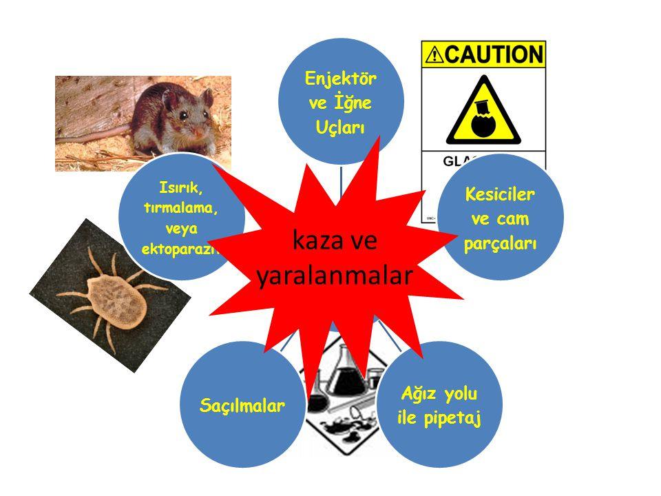 Laboratuvar Kaynaklı Tehlikeler fiziksel kimyasal biyolojik
