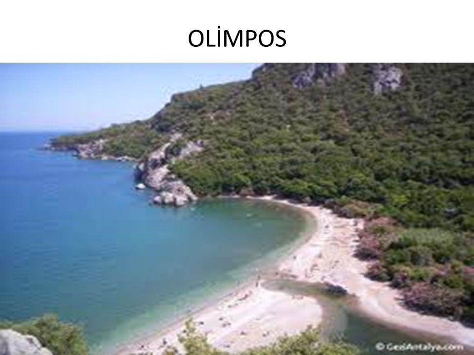 OLİMPOS