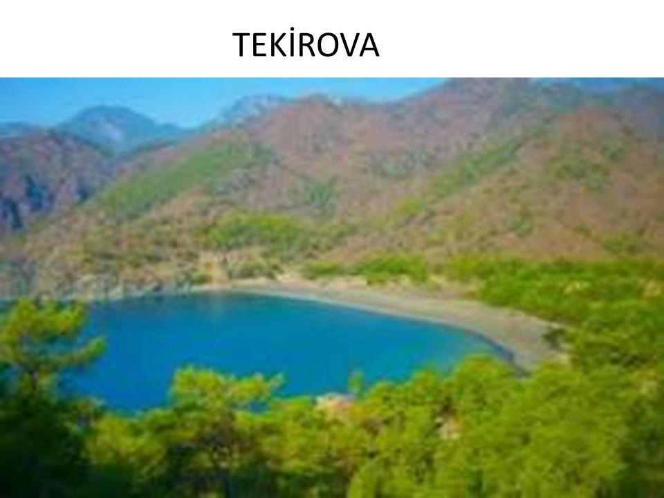 TEKİROVA