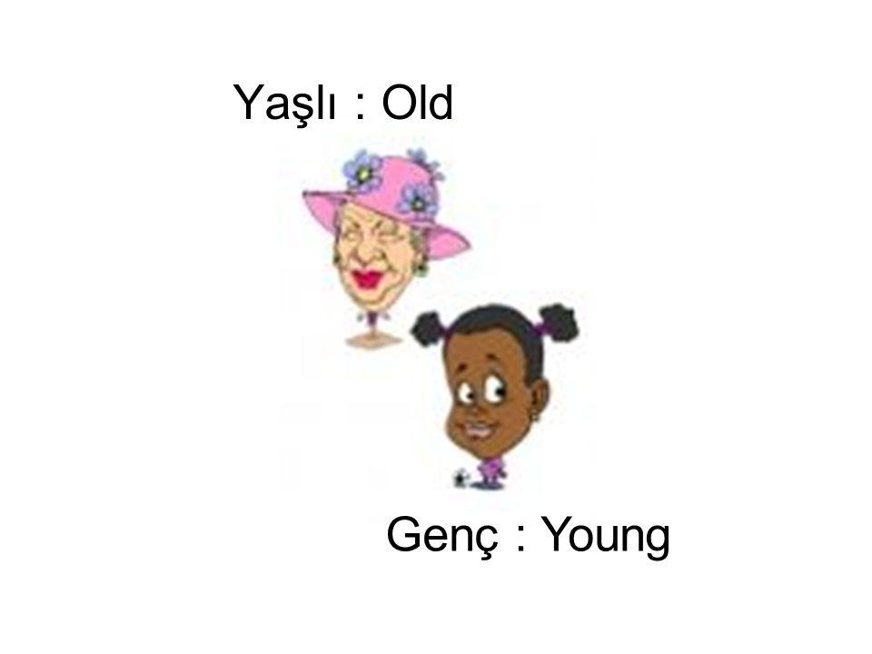 Genç : Young Yaşlı : Old