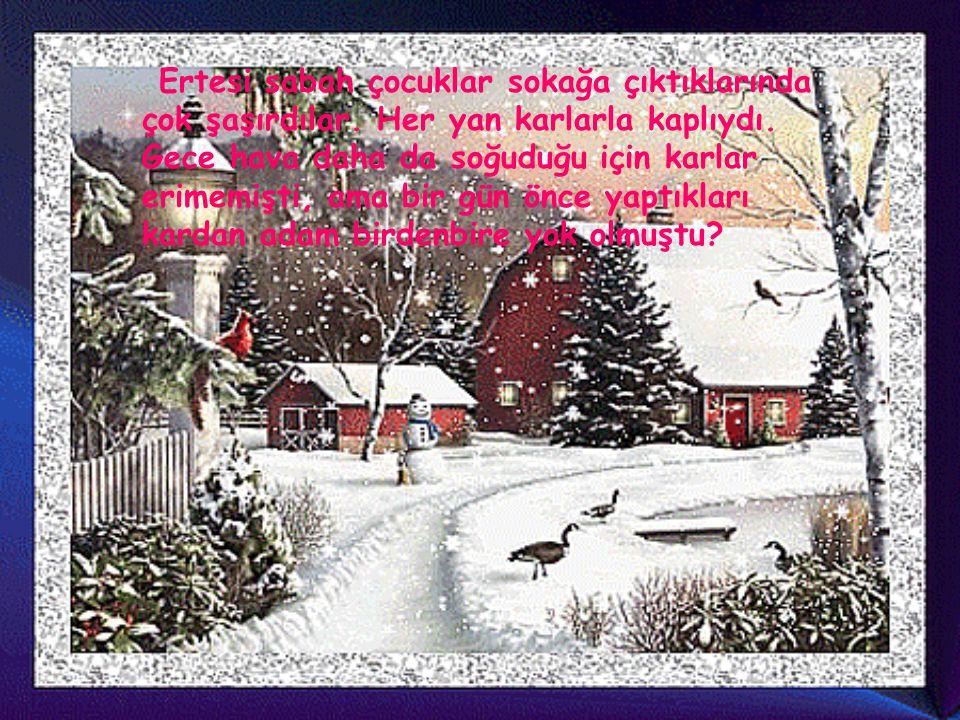 Ertesi sabah çocuklar sokağa çıktıklarında çok şaşırdılar. Her yan karlarla kaplıydı. Gece hava daha da soğuduğu için karlar erimemişti, ama bir gün ö