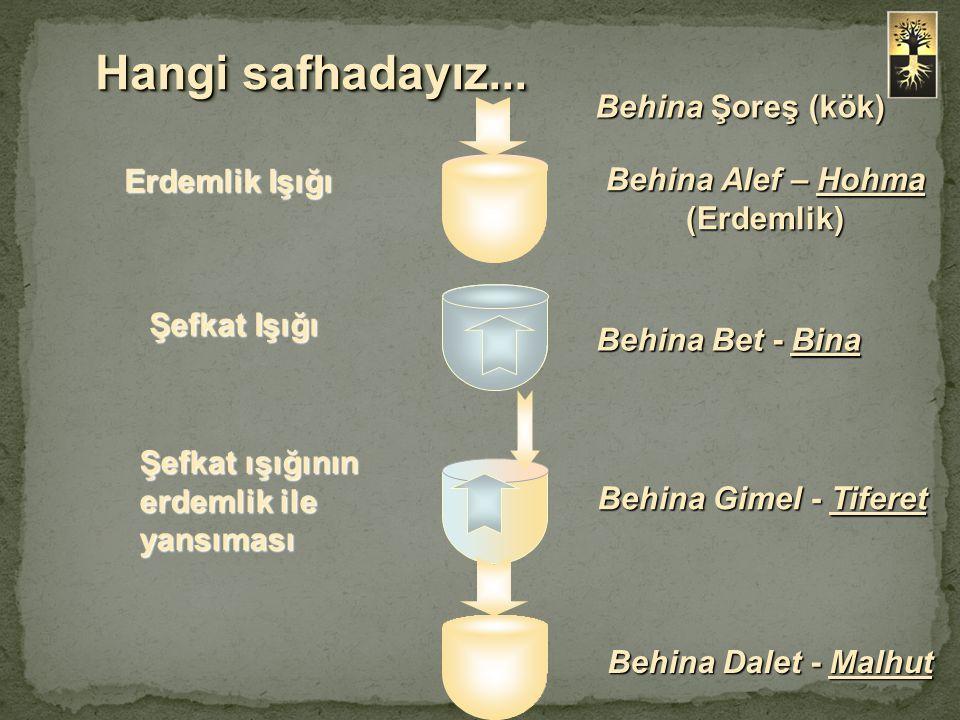 Hangi safhadayız... Behina Şoreş (kök) Behina Alef – Hohma (Erdemlik) Behina Bet - Bina Behina Gimel - Tiferet Behina Dalet - Malhut Erdemlik Işığı Şe