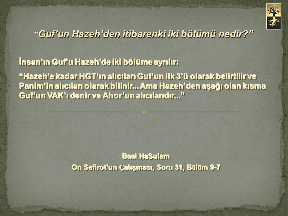 Guf'un Hazeh'den itibarenki iki bölümü nedir? İnsan'ın Guf'u Hazeh'de iki bölüme ayrılır: Hazeh'e kadar HGT'ın alıcıları Guf'un ilk 3'ü olarak belirtilir ve Panim'in alıcıları olarak bilinir...