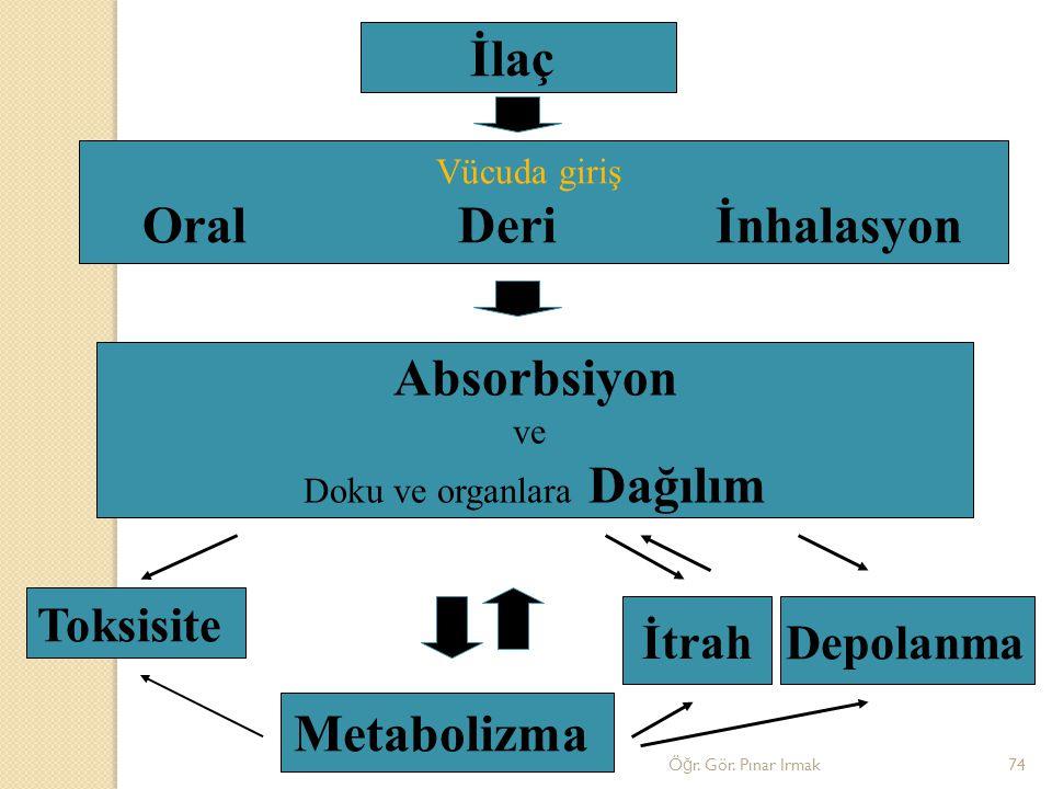 İlaç Vücuda giriş Oral Deri İnhalasyon Absorbsiyon ve Doku ve organlara Dağılım Metabolizma Toksisite Depolanma İtrah 74Ö ğ r. Gör. Pınar Irmak