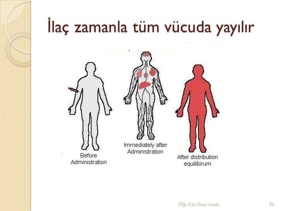 İ laç zamanla tüm vücuda yayılır 94Ö ğ r. Gör. Pınar Irmak