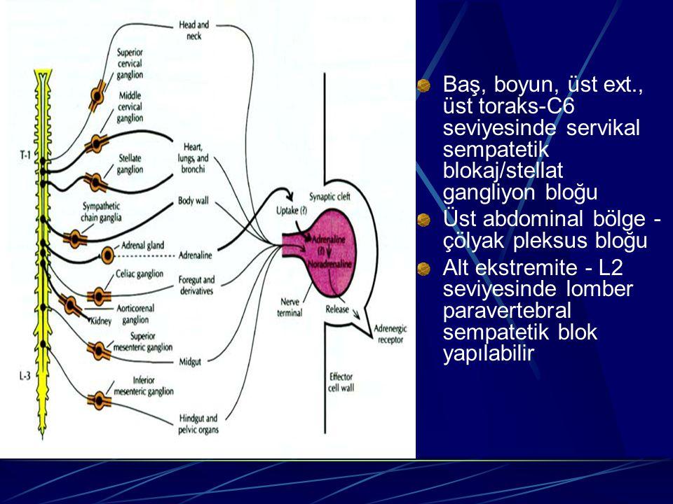 Baş, boyun, üst ext., üst toraks-C6 seviyesinde servikal sempatetik blokaj/stellat gangliyon bloğu Üst abdominal bölge - çölyak pleksus bloğu Alt ekst