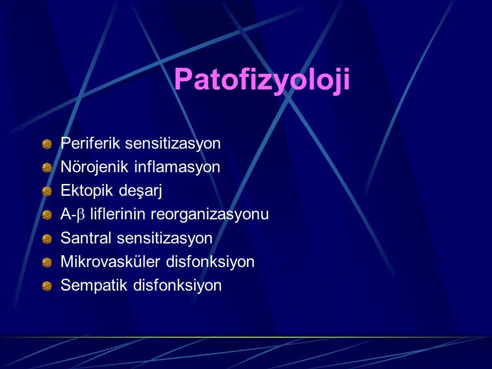 Patofizyoloji Periferik sensitizasyon Nörojenik inflamasyon Ektopik deşarj A -  liflerinin reorganizasyonu Santral sensitizasyon Mikrovasküler disfon
