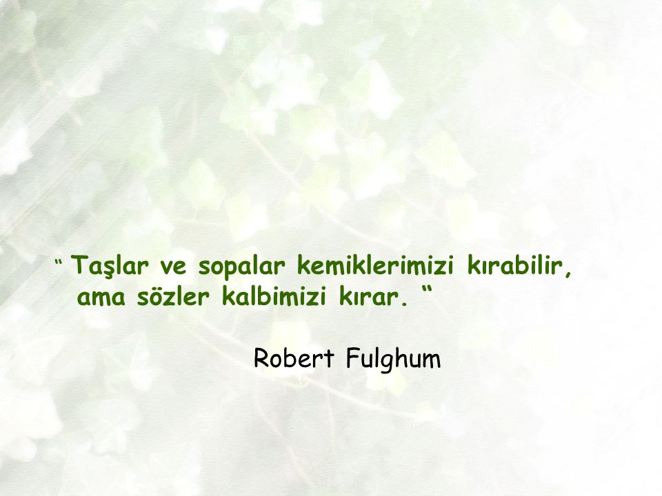 """"""" Taşlar ve sopalar kemiklerimizi kırabilir, ama sözler kalbimizi kırar. """" Robert Fulghum"""