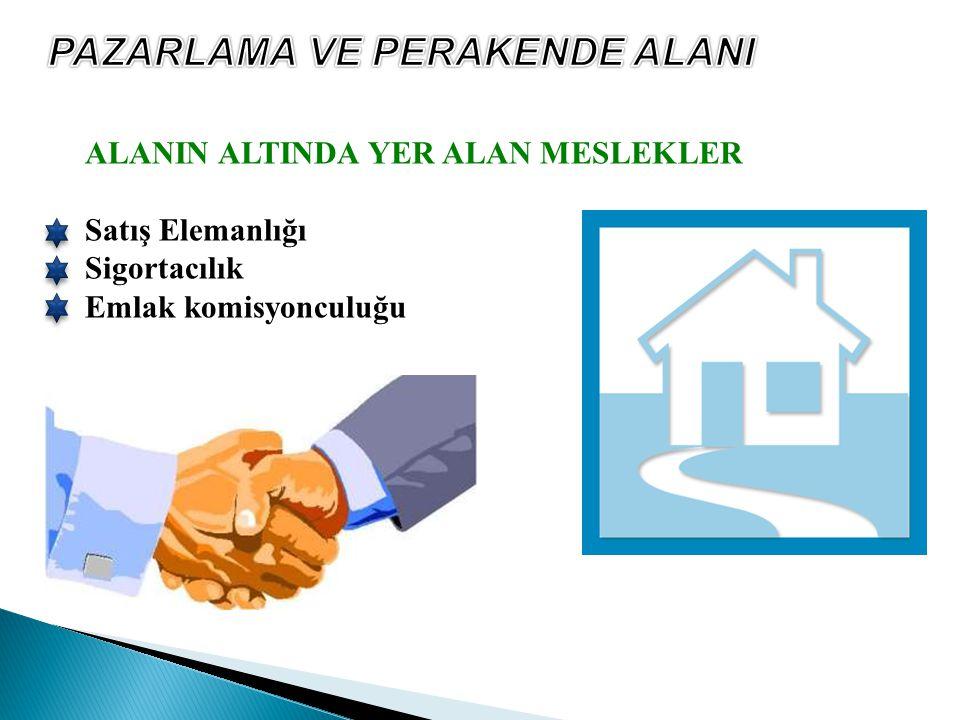 ALANIN ALTINDA YER ALAN MESLEKLER Satış Elemanlığı Sigortacılık Emlak komisyonculuğu
