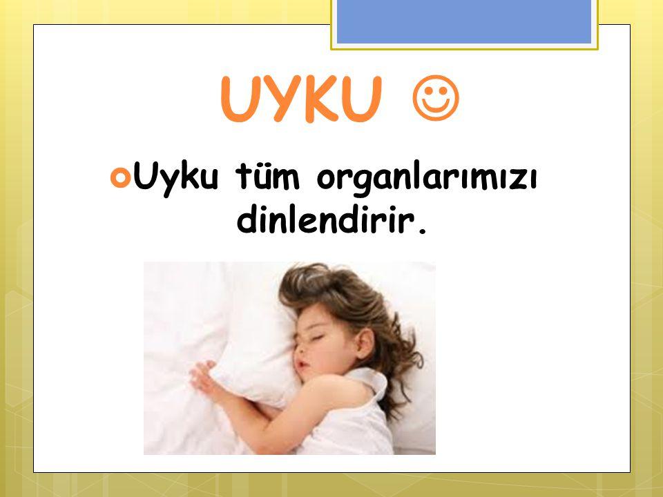 UYKU  Uyku tüm organlarımızı dinlendirir.