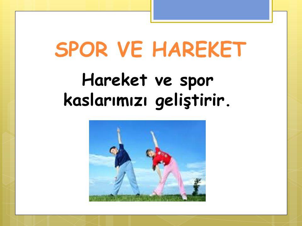 SPOR VE HAREKET Hareket ve spor kaslarımızı geliştirir.