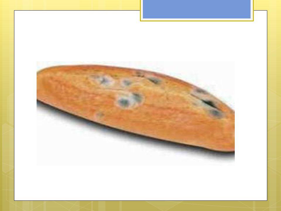 3. Çok acı ve çok ekşi yiyecekler yeme!