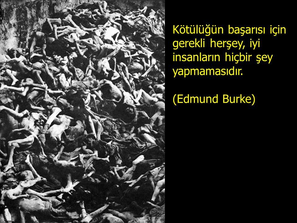 Kötülüğün başarısı için gerekli herşey, iyi insanların hiçbir şey yapmamasıdır. (Edmund Burke)