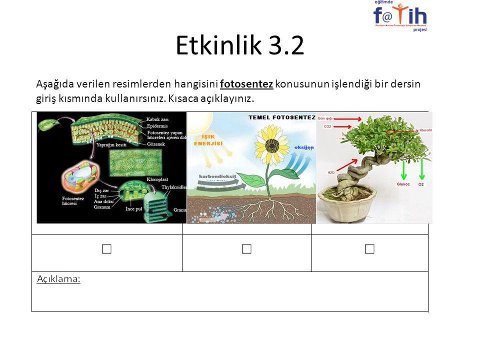 Etkinlik 3.2 Aşağıda verilen resimlerden hangisini fotosentez konusunun işlendiği bir dersin giriş kısmında kullanırsınız. Kısaca açıklayınız.