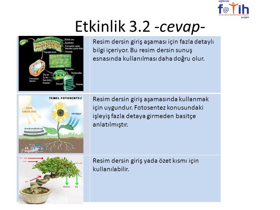 Etkinlik 3.2 -cevap- Resim dersin giriş aşaması için fazla detaylı bilgi içeriyor. Bu resim dersin sunuş esnasında kullanılması daha doğru olur. Resim