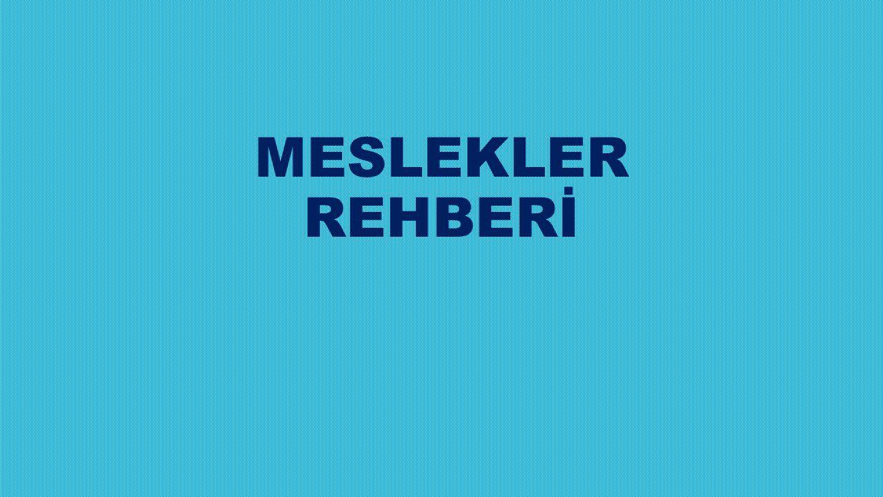 MESLEKLER REHBERİ