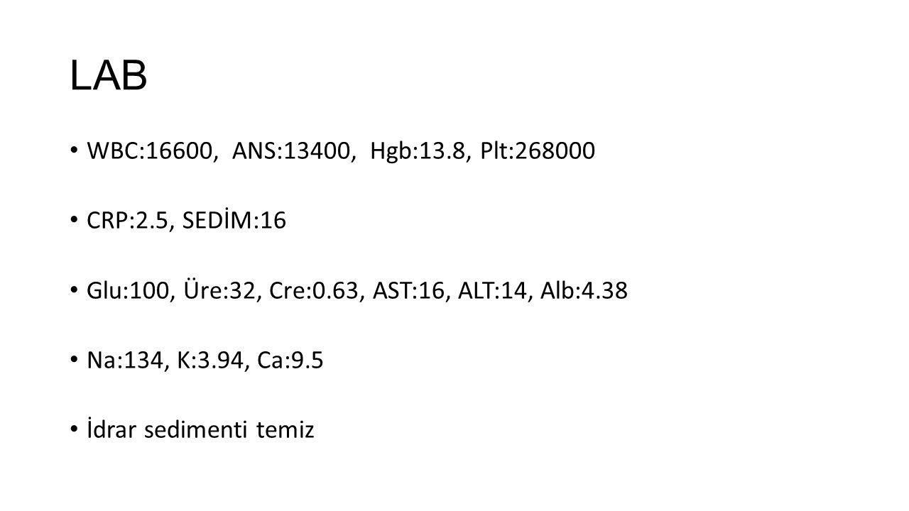 LAB WBC:16600, ANS:13400, Hgb:13.8, Plt:268000 CRP:2.5, SEDİM:16 Glu:100, Üre:32, Cre:0.63, AST:16, ALT:14, Alb:4.38 Na:134, K:3.94, Ca:9.5 İdrar sedi