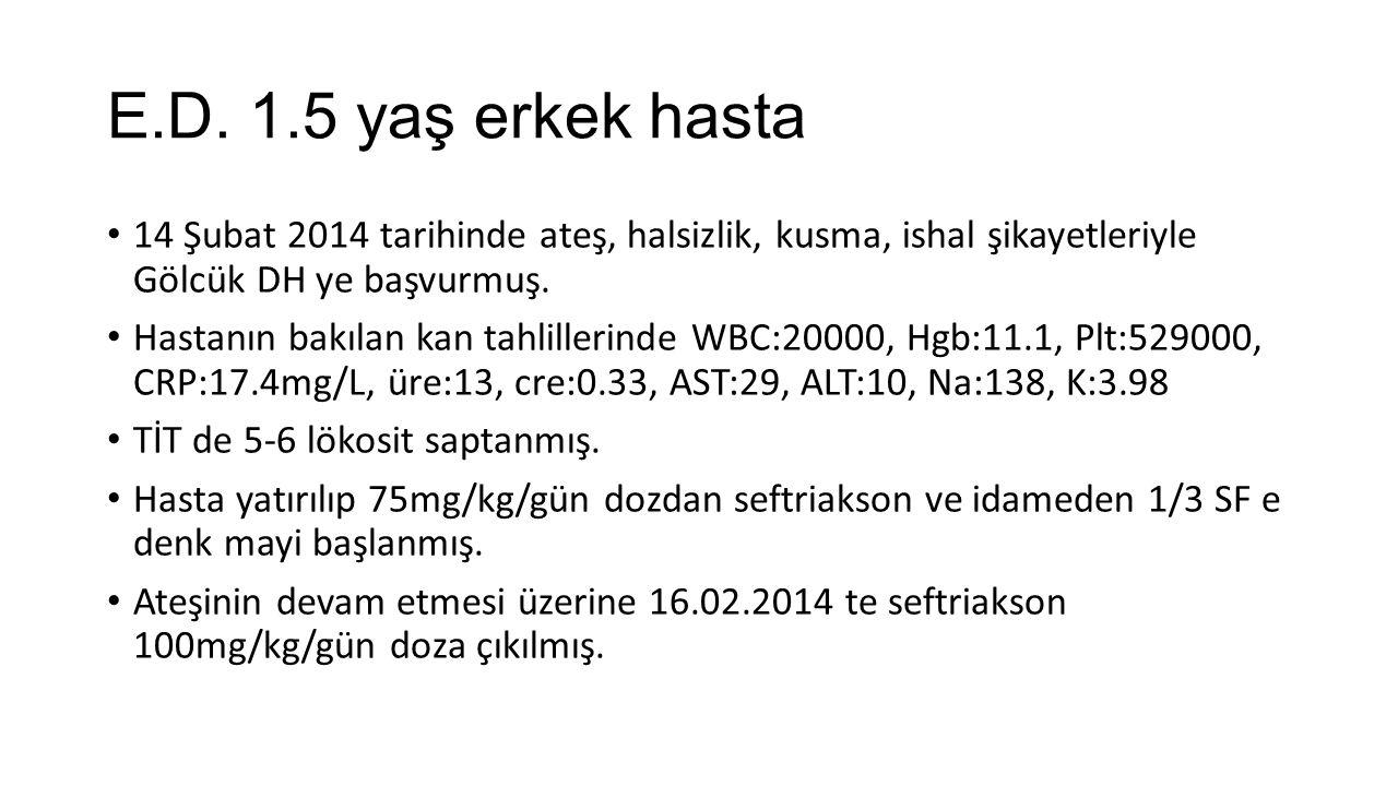 E.D. 1.5 yaş erkek hasta 14 Şubat 2014 tarihinde ateş, halsizlik, kusma, ishal şikayetleriyle Gölcük DH ye başvurmuş. Hastanın bakılan kan tahlillerin